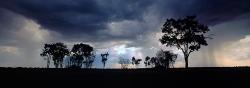 164_LZmL_569 Storm at Dusk, Chikufwe Plain