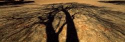 217_LZmE_382 Mchenja Shadow #1