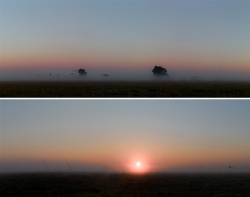 409_Opposing-Views_diptych_Kafue-Headwaters#9