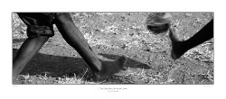 SZmS.BW.6785_CANVAS-PRINT-ON-STRETCHER-SALE_112cm-US$75