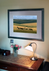 826_Home Decor-framed print 4