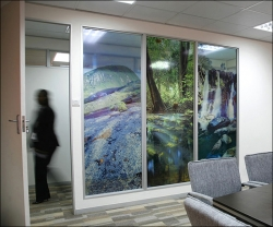 828_Corporate Offices Decor-Glass Panel prints