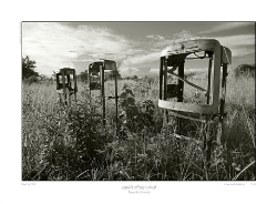 LZmS.142BW_CANVAS-PRINT-ON-STRETCHER-SALE_85cm-US$75