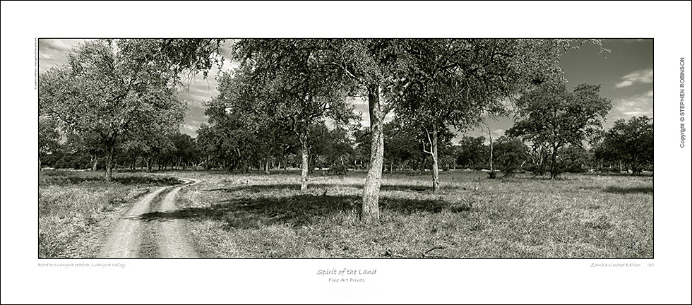 LZmE.BW.451_CANVAS-PRINT-ON-STRETCHER-SALE_112cm-US$100