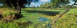 201_LZmE_450 Mbangula Lagoon, March