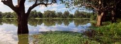 203_LZmE_428 Chipela Chandombo Lagoon, March