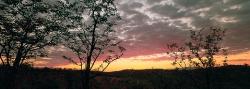 036_LZmE_75 Mopani Woodland & Sunset