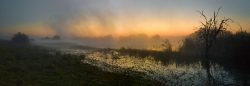 303_LZmNW_9965359-Kafue-Headwaters-Chimfunshi#3