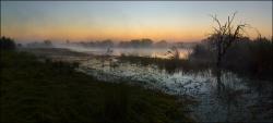 304_LZmNW_9968799V-Kafue-Headwaters-Chimfunshi#4